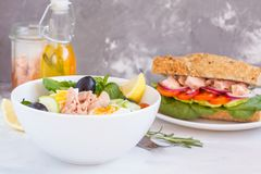 Salade de thon et sandwich à thon Images stock