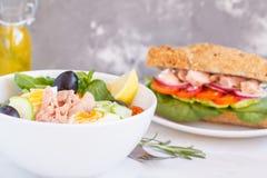 Salade de thon et sandwich à thon Image stock