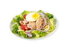 Salade de thon sur le wiew blanc de côté de plat Photographie stock