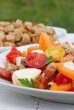 Salade de tomate Photographie stock libre de droits