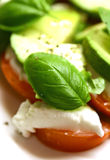Salade de tricolore de mozzarella Photo stock