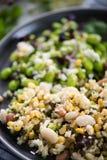 Salade de végétarien d'aliment complet photos libres de droits