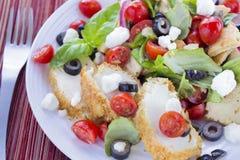 Salade de van het Middenoosten van het Brood met Kip Stock Afbeeldingen