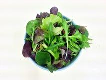 Salade de verts hydraulique de légumes mélangés, nourriture propre, nourriture de régime, nourriture saine Images stock
