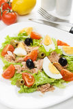 Salade de viande d'oeufs et de thon Photos stock