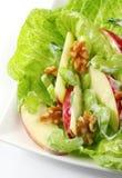 Salade de Waldorf photographie stock