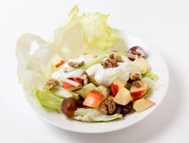 Salade de Waldorf au-dessus de blanc Photographie stock libre de droits