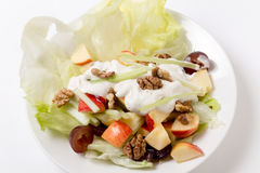 Salade de Waldorf au-dessus de la vue courbe blanche Photos libres de droits