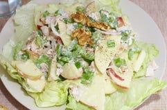 Salade de Walford photos stock