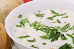 Salade de yaourt Photos libres de droits