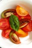 Salade des tomates Image libre de droits