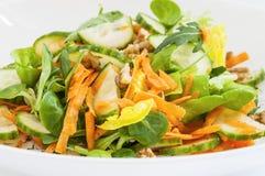 Salade diététique Photographie stock libre de droits