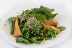 Salade diététique Photo libre de droits