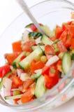 Salade diététique des tomates, des concombres et de radis Photographie stock libre de droits