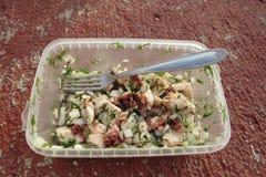 Salade do polvo com cebola e aneto Fotos de Stock