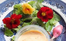 Salade du cru fraîche photos libres de droits
