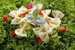 Salade en deegwaren Stock Foto's