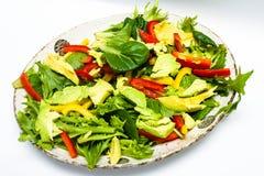 Salade faite à la maison fraîche avec l'avocat Photo libre de droits
