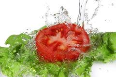 Salade fraîche étant lavage image stock