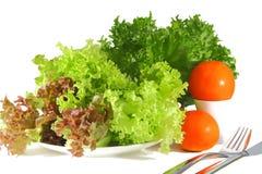 Salade fraîche Photos libres de droits