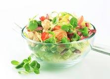 Salade fraîche avec de la viande de poulet Photos stock