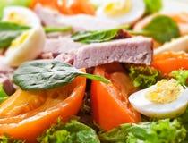Salade fraîche avec de la viande et des oeufs Images stock