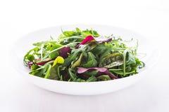 Salade fraîche avec des verts mélangés et x28 ; arugula, mesclun, mache& x29 ; sur la fin en bois blanche de fond  photo libre de droits