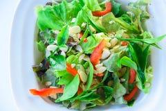 Salade fraîche avec le thé vert Image stock