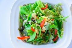 Salade fraîche avec le thé vert Images libres de droits