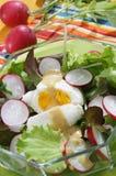 Salade fraîche d'été Images libres de droits