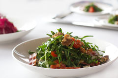 Salade fraîche d'arugula Photo stock