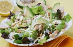 Salade fraîche d'avocat Photo stock