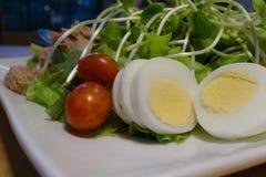 Salade fraîche d'oeufs prête à servir photo stock