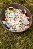 Salade fraîche dans la cuvette image libre de droits