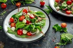 Salade fraîche de Cherry Tomato, de mozzarella avec la préparation verte de laitue et l'oignon rouge servi du plat Nourriture sai Image stock