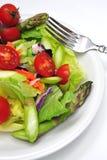Salade fraîche de dîner Photo libre de droits