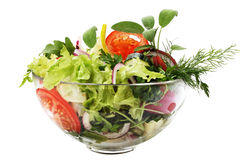 Salade fraîche de jardin Photo libre de droits