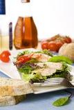 Salade fraîche de jardin avec le poulet grillé Photographie stock
