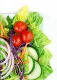 Salade fraîche de jardin sur le fond blanc Images stock