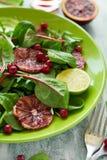 Salade fraîche de ressort avec l'arugula, les feuilles de betterave, l'avocat, les tranches oranges rouges et la canneberge Images stock
