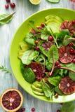 Salade fraîche de ressort avec l'arugula, les feuilles de betterave, l'avocat, les tranches oranges rouges et la canneberge Photo stock