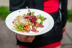 Salade fraîche de ressort avec le vinaigrette de framboise image libre de droits