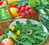 Salade fraîche de ressort - pissenlit comestible Photo libre de droits