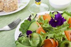 Salade fraîche de source Photographie stock
