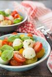 Salade fraîche de tomate avec du fromage photo libre de droits