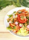 Salade fraîche et délicieuse Photographie stock