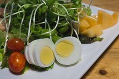 Salade fraîche prête à servir photo libre de droits