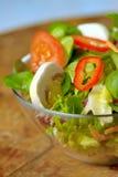Salade fraîche savoureuse Image stock