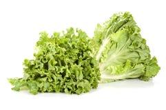 Salade française sur le blanc photos stock