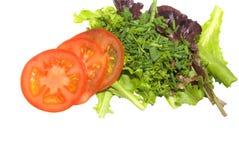 Salade gastronome d'isolement Image libre de droits